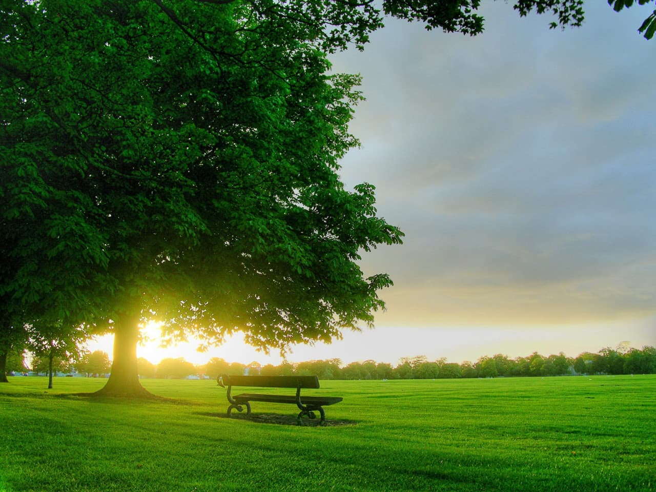Sunrise_On_A_Green_Field_freecomputerdesktopwallpaper_1280